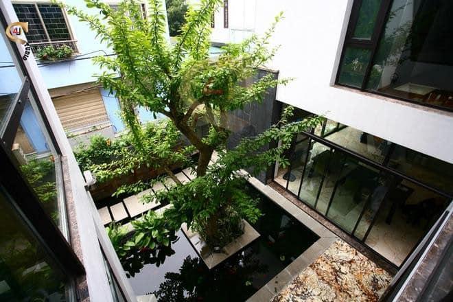 4u studio thiết kế nội thất không gian xanh